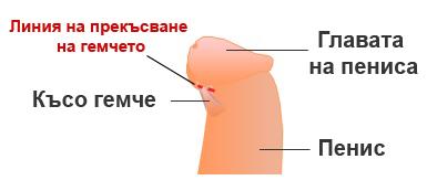 kuso-gemche