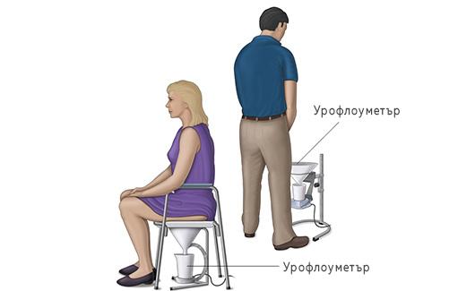urofloumeria-urologichen-centur-vassilev